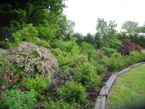 jardin symb 1